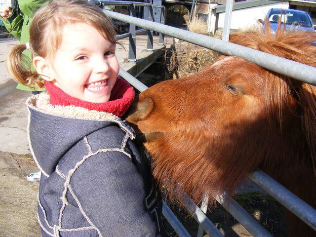 mara-en-pony